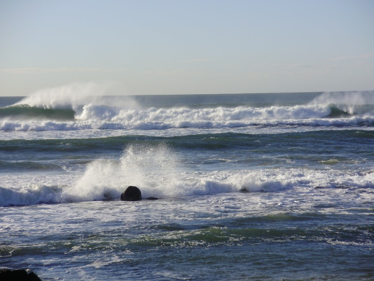 Waves near Nobbys July 2009